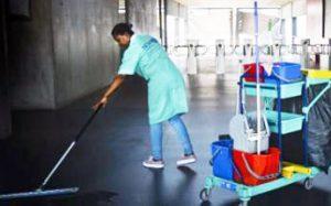 Limpieza de comunidades Villarrapa